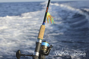 cana-pesca-spinning