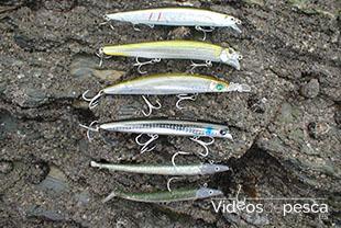 cebo-pesca-lubina