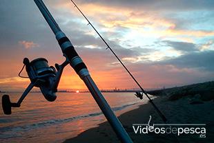 pesca_surfcasting