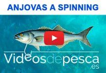 video_anjova_spinning