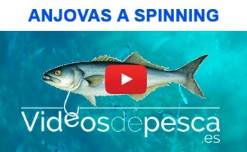 video_anjova_spinning