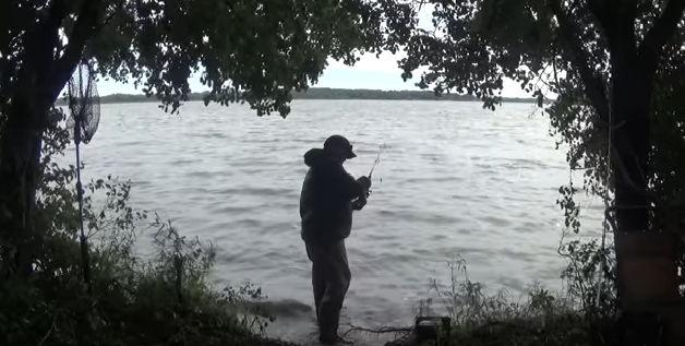 Los mejores pantanos para pescar carpas