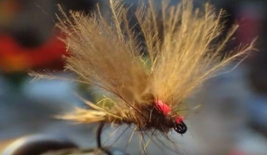 Las mejores moscas para pescar carpas