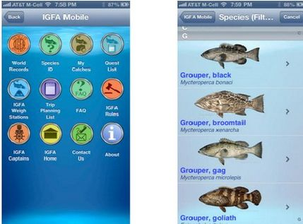 Las mejores aplicaciones de pesca