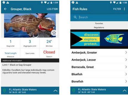 Las mejores apps de pesca